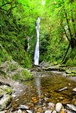 Waterfall in the rainforests Vancouver Island, Canada Royalty Free Stock Photos