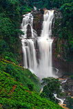 Waterfall Ramboda Royalty Free Stock Photo
