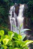Waterfall Ramboda Stock Photography
