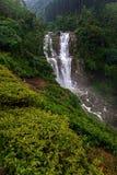 Waterfall Ramboda in Sri Lank Stock Photography