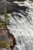 Waterfall rapids. Closeup landscape nature shot of water rushing rapids in a waterfall taken at yellowstone national park in wyoming stock photography