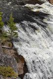 Waterfall rapids. Closeup landscape nature shot of water rushing rapids in a waterfall taken at yellowstone national park in wyoming royalty free stock images