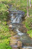 Waterfall ravine Royalty Free Stock Photo
