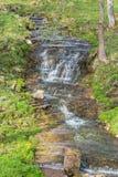 Waterfall ravine Royalty Free Stock Photo