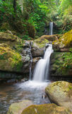 Waterfall from ravine Royalty Free Stock Photo