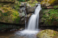 Waterfall from ravine Royalty Free Stock Image