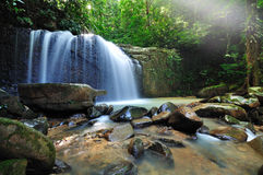 Waterfall and rays. Waterfall in the jungle with early morning rays royalty free stock image