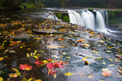 Waterfall with red leafs Stock Photo