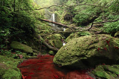 Waterfall and red river in deep forest Royalty Free Stock Photography