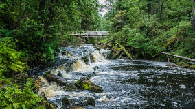 Waterfall in Republic Karelia. Waterfall and bridgein the Karelia Royalty Free Stock Photo
