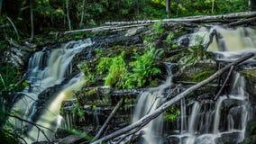 Waterfall in Republic Karelia. Small waterfall in Karelia and fallen tree Stock Photos