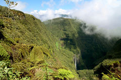 Waterfall, Reunion island. Trou de fer waterfall, on french Reunion island among a cloud forest with tree ferns Stock Photo