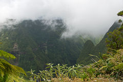 Waterfall in Reunion Stock Image