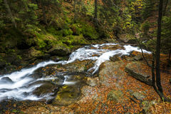 Waterfall riessloch in Bavaria Royalty Free Stock Photos