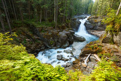 Waterfall. And river flowing through forest Royalty Free Stock Images