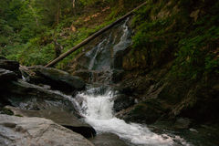 Waterfall and river in forest Stock Image