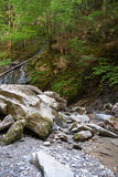 Waterfall and river in forest Stock Images