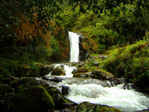 Waterfall and River Royalty Free Stock Images