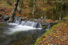Waterfall Royalty Free Stock Image