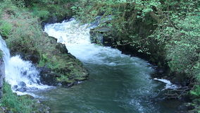 Waterfall and River Rapidly Flowing. Water falling down a hill into a rapidly flowing Cedar Creek river surrounded by rocks and trees in Washington State in the stock footage
