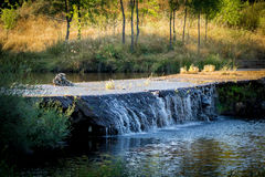 Waterfall in the river. A small waterfall in a river near Penamacor (Portugal Royalty Free Stock Photography