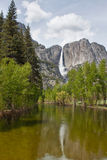 Waterfall and the river in yosemite national park Royalty Free Stock Images
