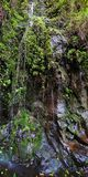 Waterfall on the Road To Hana Royalty Free Stock Photos