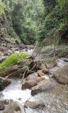 waterfall roads royalty free stock image