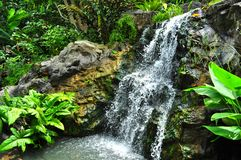 Waterfall on the rock Stock Photography