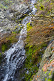 Waterfall on rock with fall colors. Water running down rock covered with mosses and plants in bright fall colors of red and orange royalty free stock photo