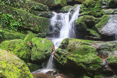 Waterfall and rocks covered with moss Stock Photos