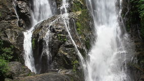 Waterfall and rocks covered with moss. Rainforest waterfall and rocks covered with moss stock video