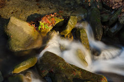 Waterfall. With rocks and leafs Stock Photography