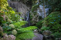 Waterfall and rocks in lush green flowery environment,Cascata do Porto Formoso, Azores stock photography