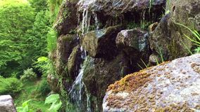 Waterfall rocks. Shot in real time. Beautiful action in the forest. Waterfall rocks stock video