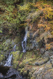 Waterfall at the Rocks of Solitude Gorge in Scotland. Stock Photography