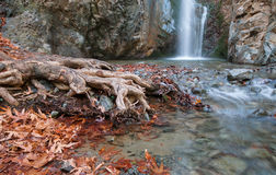 Waterfall between rocky mountain Troodos Cyprus. Waterfall splashing on a small lake with beautiful yellow leaves and tree roots. Waterfall is  Millommeri and Royalty Free Stock Photos