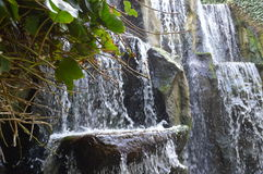 Waterfall on a rocky mountainside Royalty Free Stock Photos