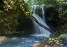 Waterfall In Romania. Romanian waterfall in carpathian mountains Royalty Free Stock Photo