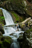 Waterfall on a rocky cliff. Scenic view of a waterfall cascading down a rocky cliff Stock Photos
