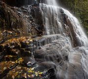 Waterfall and roots ( His res combo). 2 frames combined to make this his res image of beautiful waterfall with fall leaves and roots Stock Images