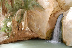 Waterfall on Sahara Desert. Small oasis with a waterfall and palm trees stock image