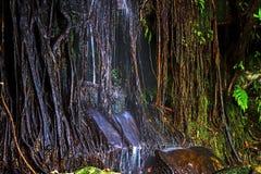 Waterfall Sai Rak Yoi Royalty Free Stock Photo