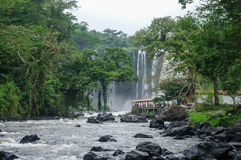 Waterfall Salto de Eyipantla. San Andres Tuxtla (Mexico Royalty Free Stock Images