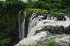 Waterfall Salto de Eyipantla. San Andres Tuxtla (Mexico Royalty Free Stock Photos