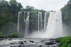 Waterfall Salto de Eyipantla Royalty Free Stock Photos