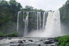 Waterfall Salto de Eyipantla royalty free stock photos