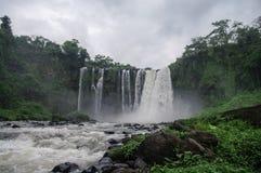 Waterfall Salto de Eyipantla. San Andres Tuxtla (Mexico Stock Images