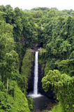 Waterfall in Samoa. Surrounded by lush vegetation Royalty Free Stock Image