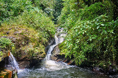 Waterfall. In Santa Rosa de Cabal, Colombia Royalty Free Stock Images